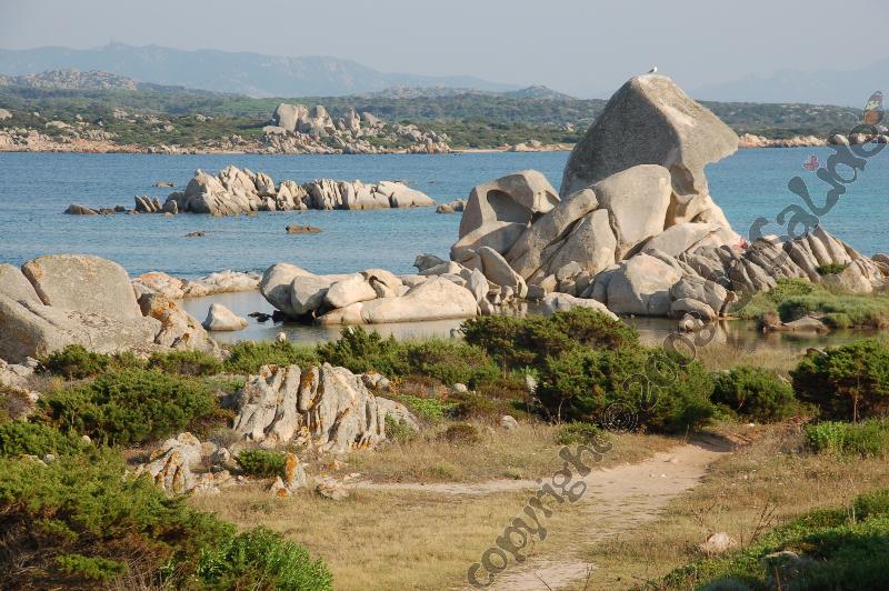spiaggia_testa_di_polpo_bb_crisalide_la_maddalena_4