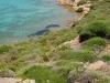 monti-di-rena- 2 arcipelago la Maddalena