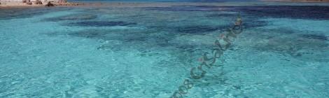 Offerta speciale Giugno 2014 la Maddalena